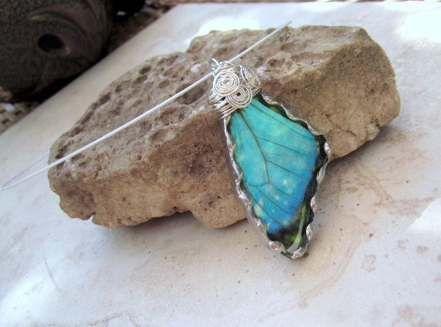 Real Butterfly Wing Jewelry  Pendant  by DebrasDivineDesigns