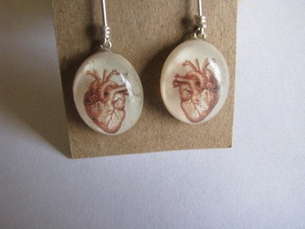 Anatomical Heart Earrings Cream