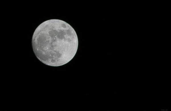 Full Moon Photo Large Focus Detailed Print for Sale