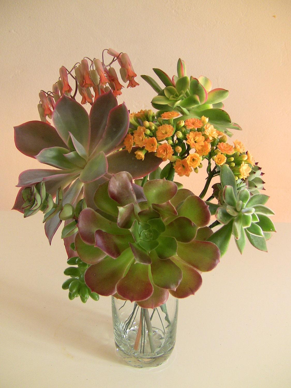 Diy Wedding Flowers Succulents : Succulent wedding bouquet diy by