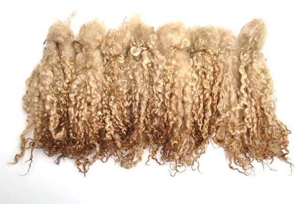 Hand dyed light brown Teeswater long wool locks 30 gr for Doll Hair - Blythe Doll Hair ,  Art Dolls , spinning and felt