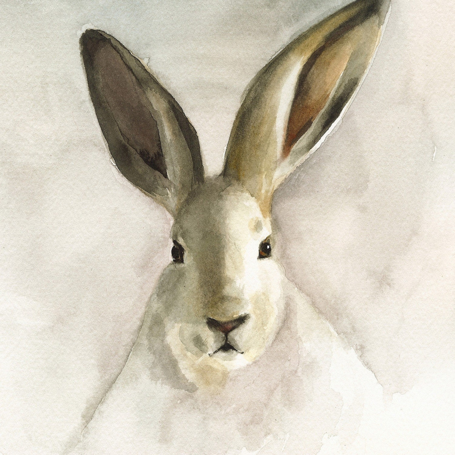 Watercolor print of rabbit.