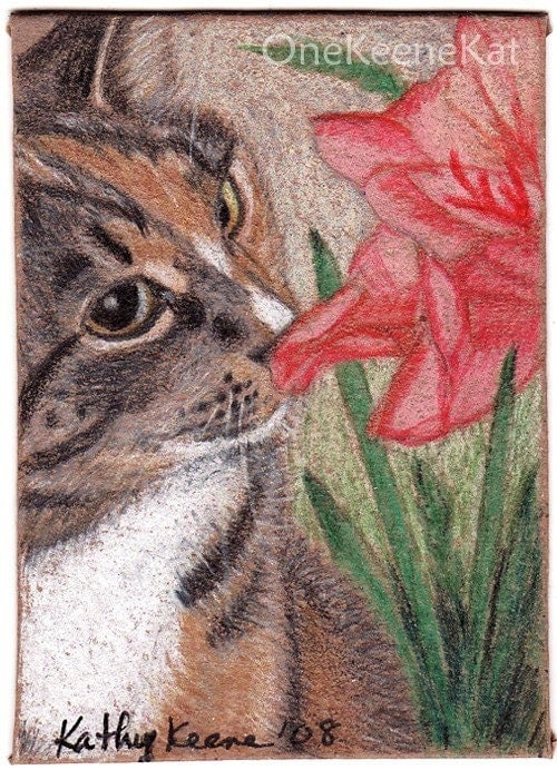 ACEO PRINT Tabby Cat Sniffing Flowers Colored Pencil Drawing CaaT