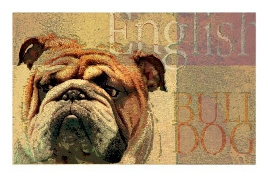 ENGLISH BULL DOG Art Print MODERN GRUNGE ART POSTER Signed CUTE DOG