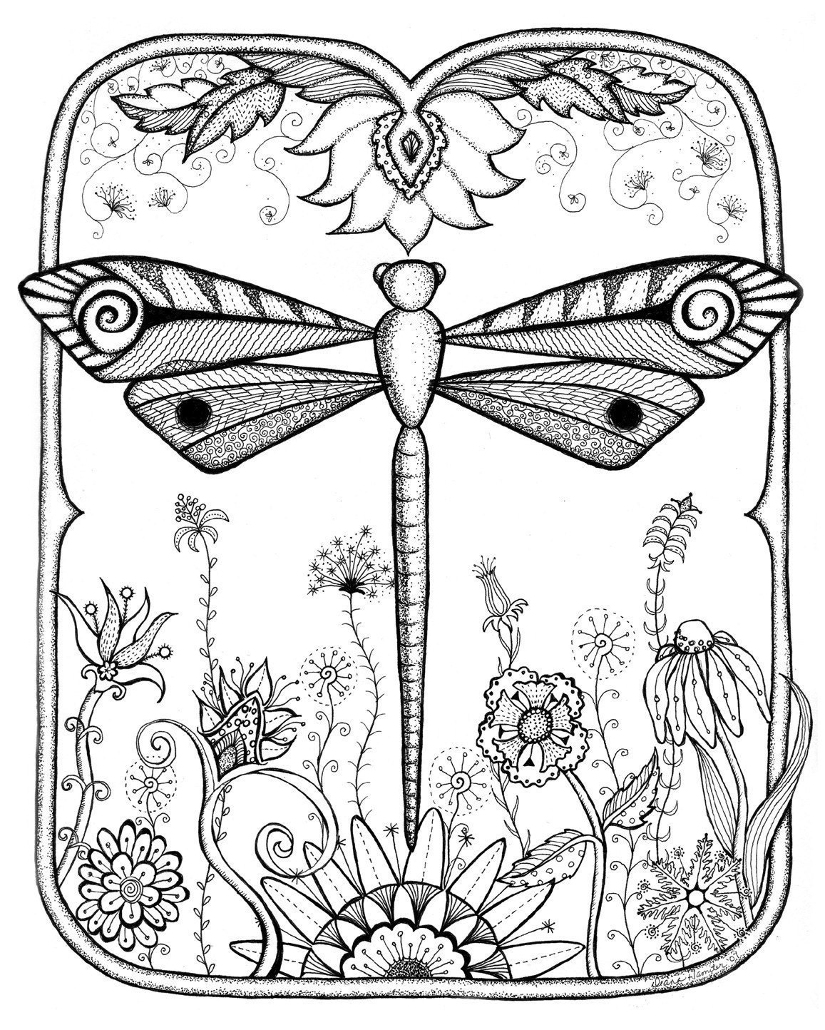 Dragonfly Colouring Pages : Dragonfly designs colouring pages