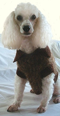 Dog Sweaters : Crochet Patterns, Knitting Patterns, Hooks, Needles