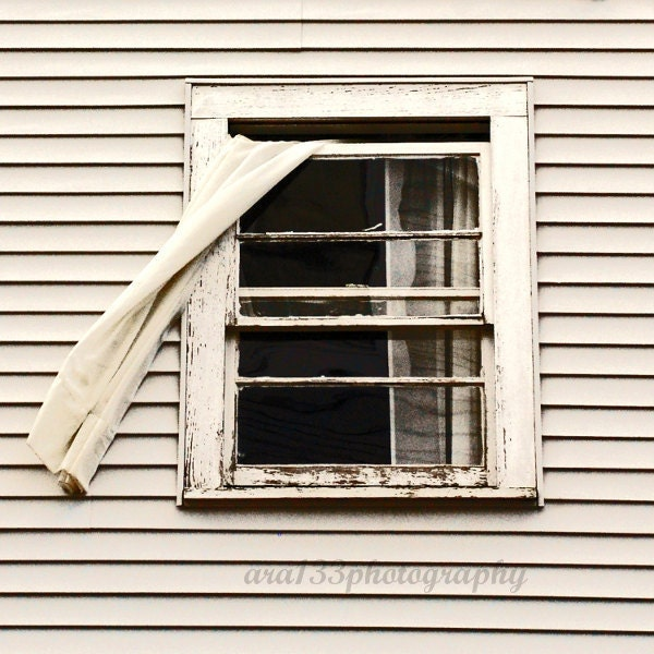 "Rustic Photography - 8x8 inch Photograph of a Farmhouse Window- ""Fly Through The Window"" - ara133photography"