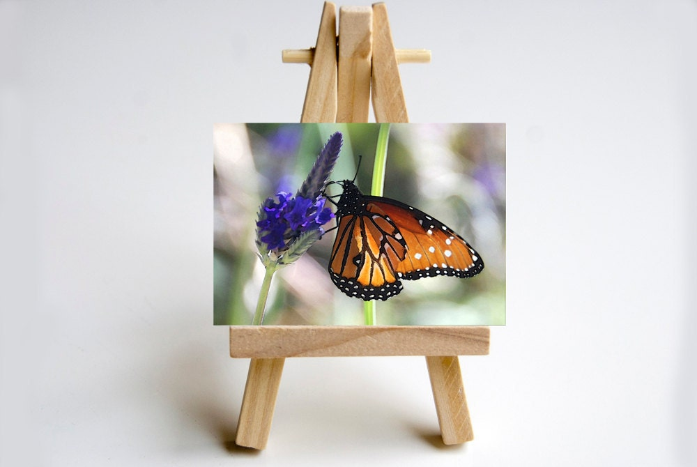 Any Photo Print in my shop, ACEO, with easel