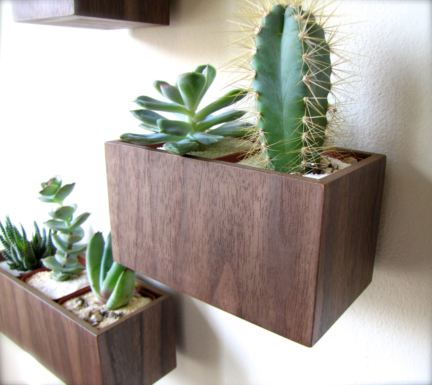 "Wall Planter, Plant Holder, Succulent Holder, made from WALNUT wood, MEDIUM rectangular shape (roughly 5"" x 3""), plants NOT included - thewoodybeckers"