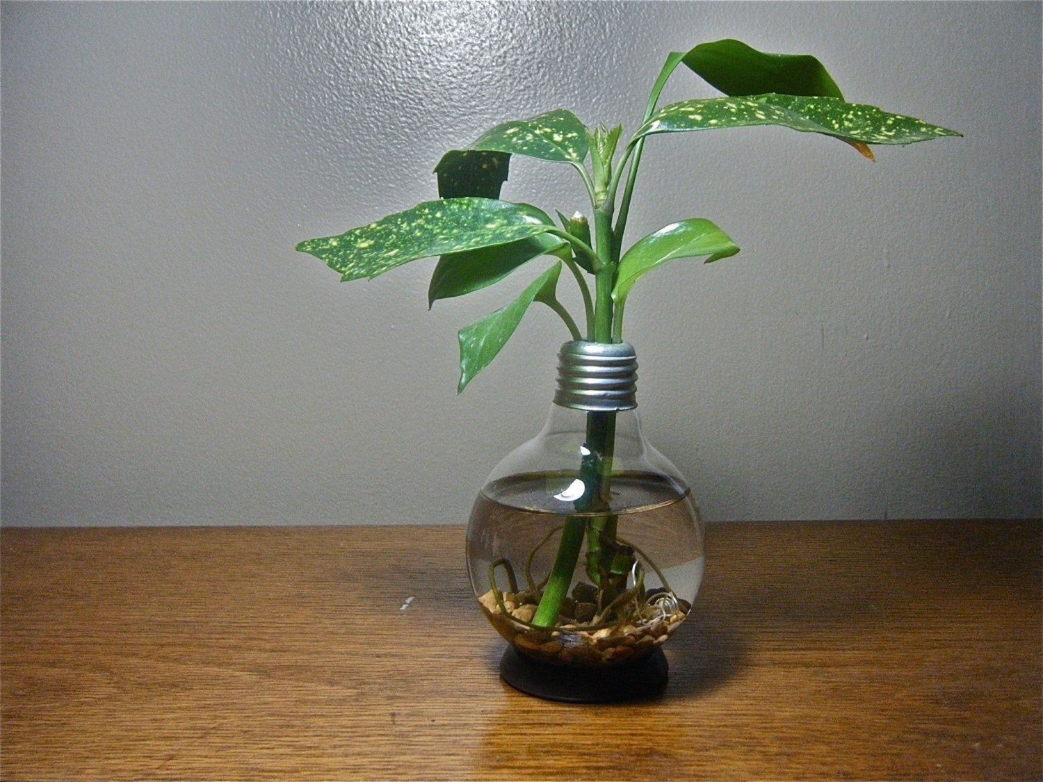 Repurposed Round Lightbulb Vase