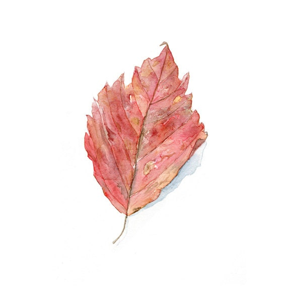 Leaf Watercolor Painting - Art Print Based on Original Watercolor Painting, Autumn Leaves, Fall Foliage, Red, Pink, Orange - Watercolour - trowelandpaintbrush