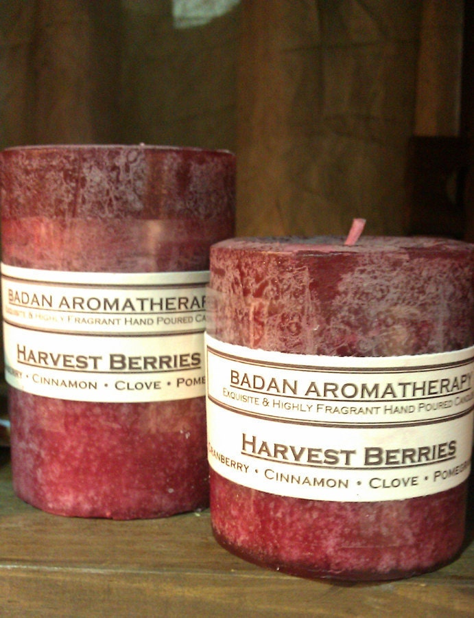 Candle: Fragrant Dark Red Cranberry Pomegranate Cinnamon & Clove Pillar Candle 3x4.5