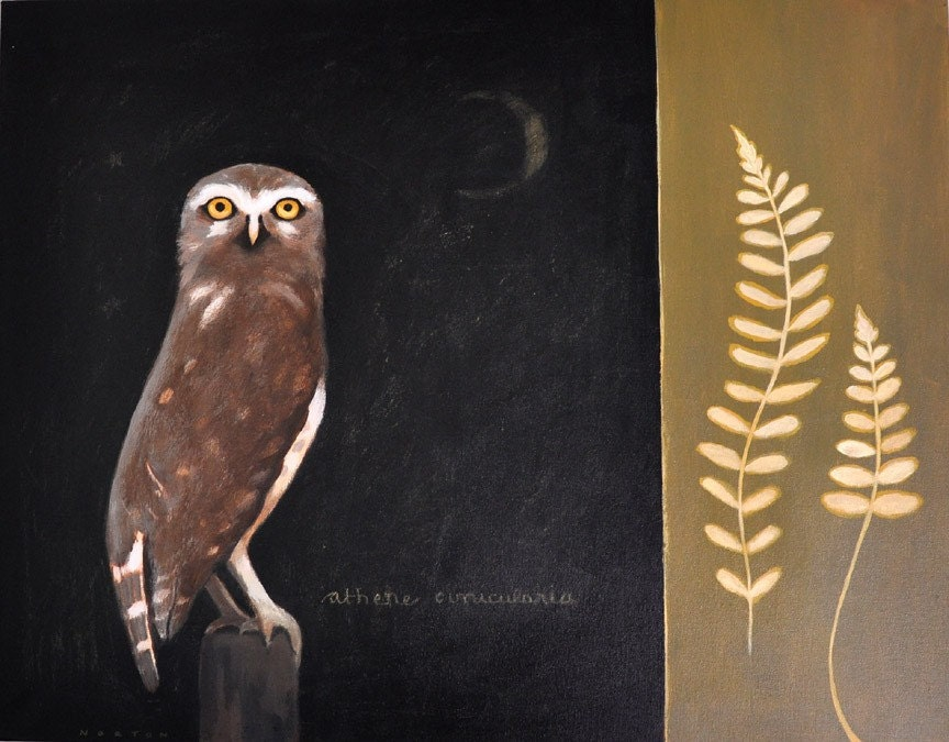 Burrowing Owl and Ferns Original Painting