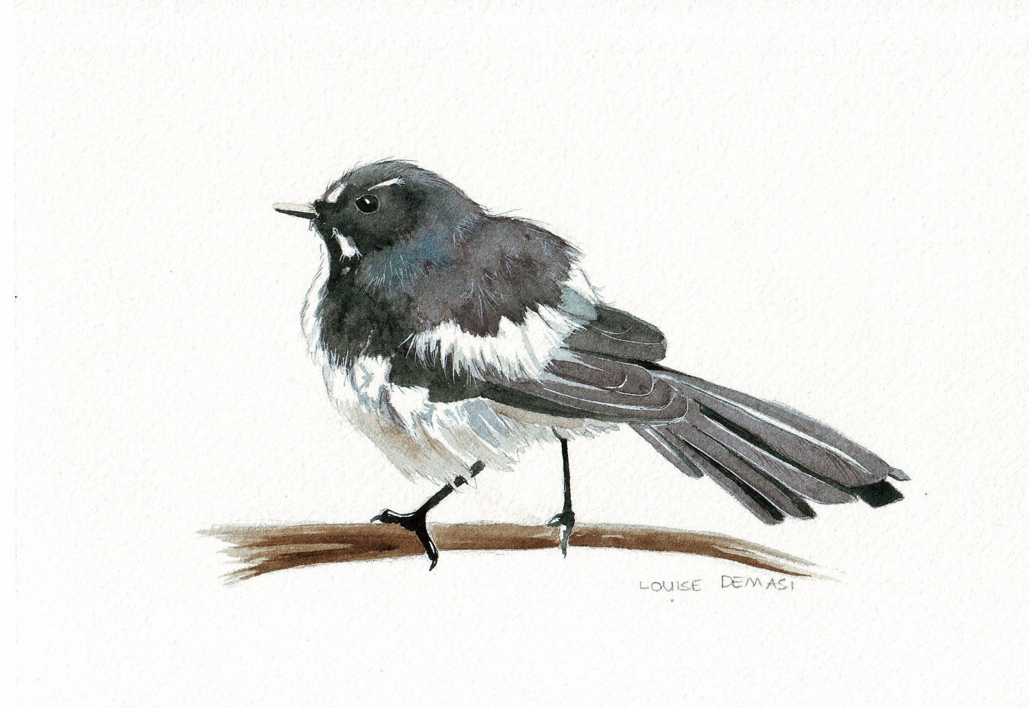 Willie Wagtail No. 025  Bird print of watercolor painting