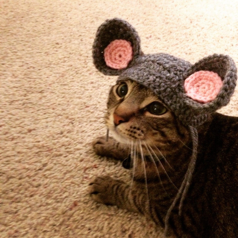 Вязание ушей для кота