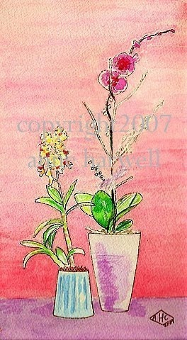 ORCHIDS PRINT