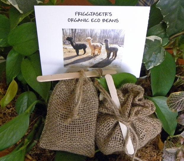 Organic Eco Beans - Plant Fertilizer - Plant Tea Bags