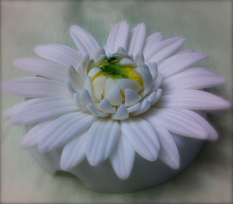 fondant gerbera daisy