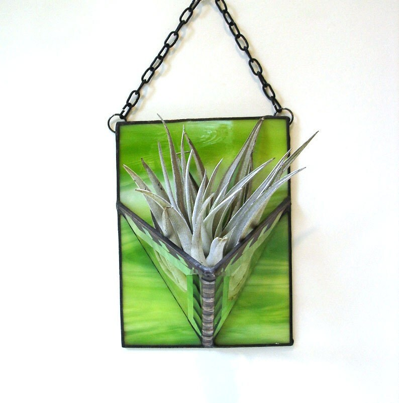 Air plant stained glass holder lime green modern contemporary wall planter home decor - DesignsStainedGlass