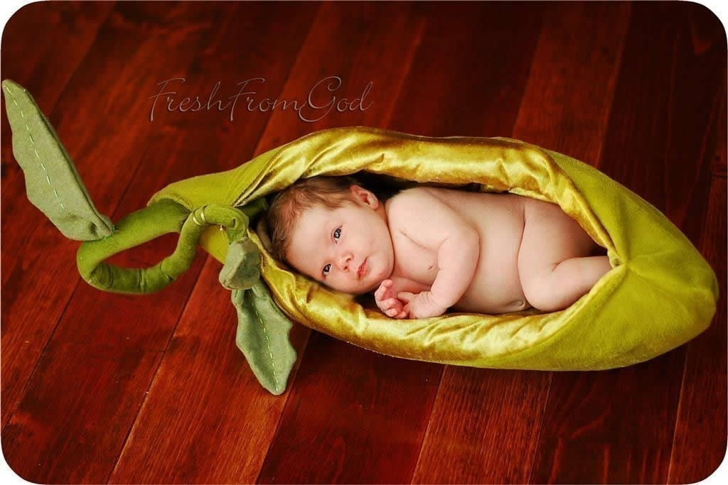 pea pod for baby -  A photographer's prop or just perfectly sweet...