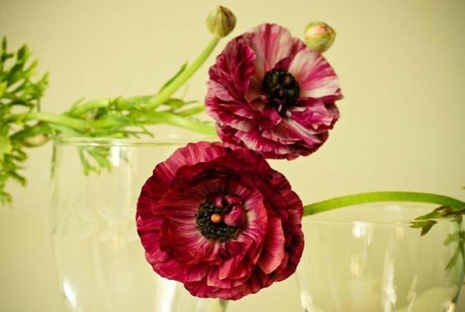 Ирония судьбы.  фиолетовый фиолетовый летние цветы старинных очков потертый шик коттедж роман доступным искусством 8x10 Репродукция фотографии