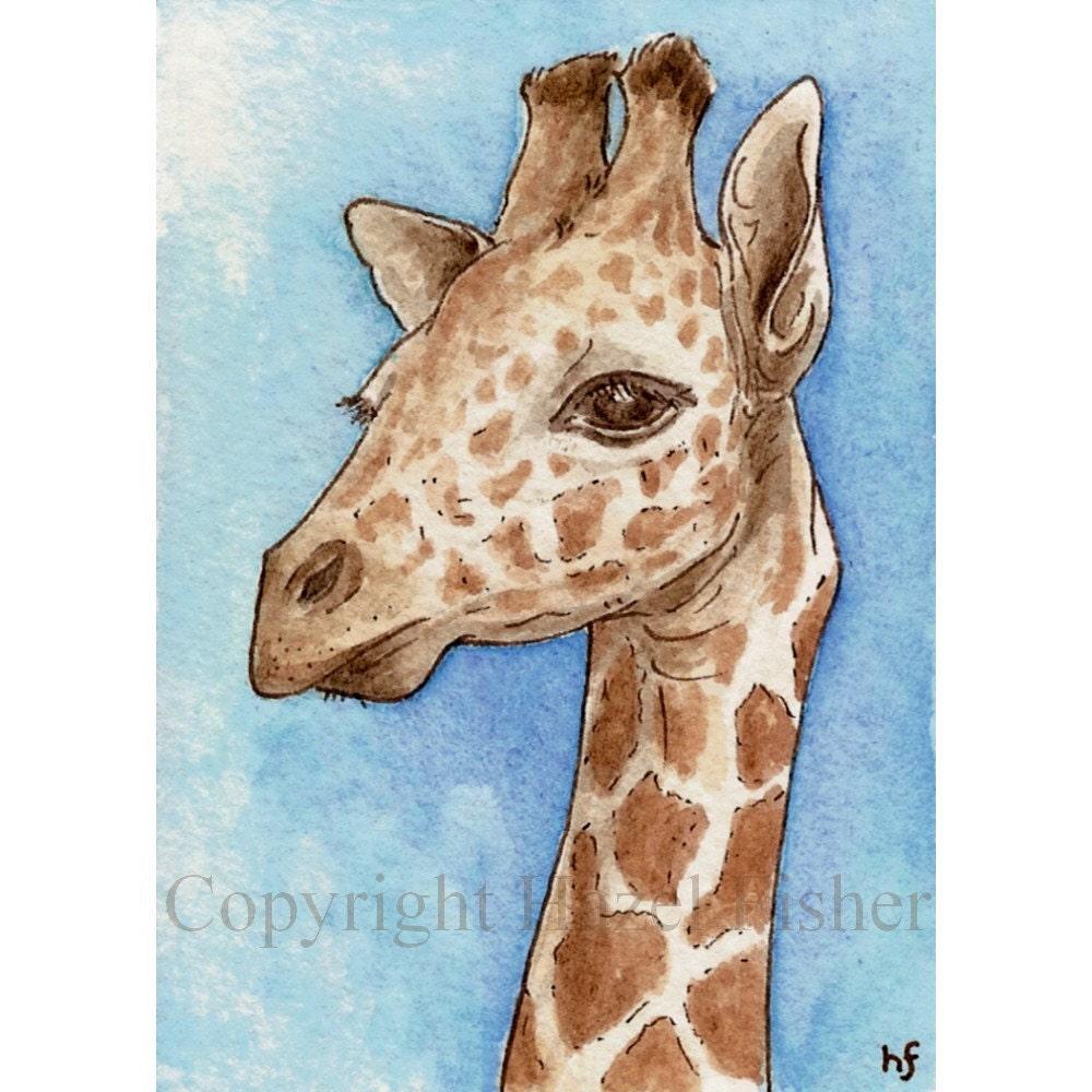 Giraffe ACEO - Open Edition Print