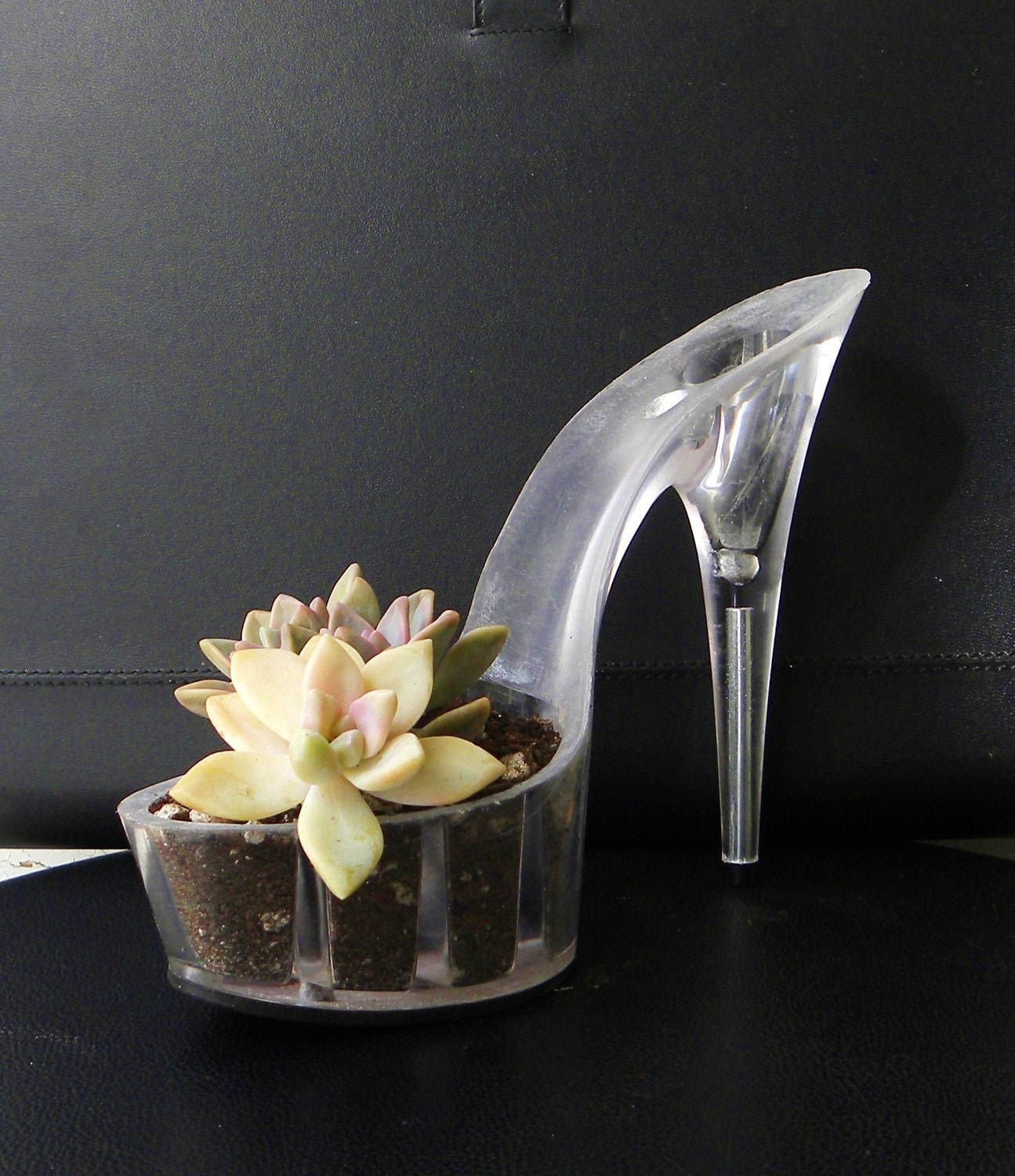 who shot sally. reclaimed stiletto succulent planter