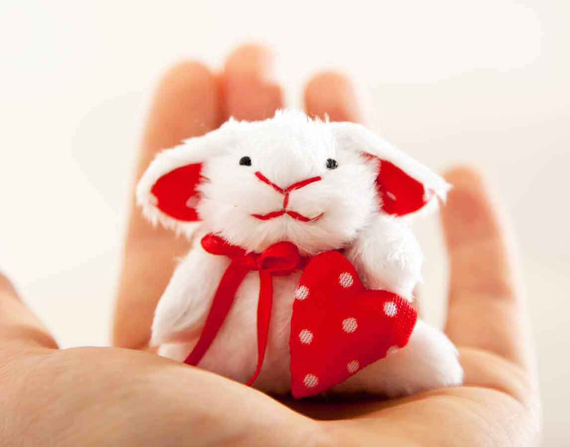 Little bunny, Miniature bunny rabbit handmade with a heart in a gift box, Cute bunny, White Rabbit, Heart - JuliaWine