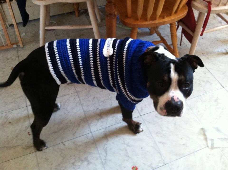 Custom Dog Sweater - XXL - Choose your colors and sizes