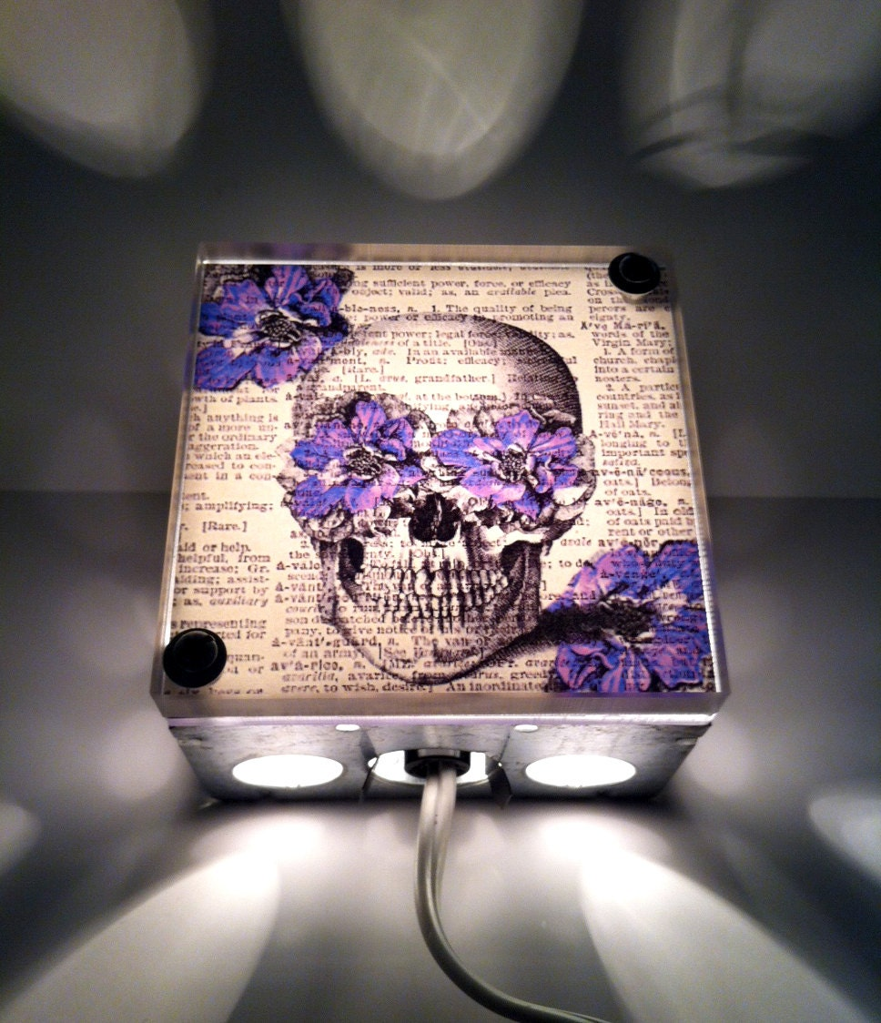 Steampunk Anatomy Skull With Purple Flowers By