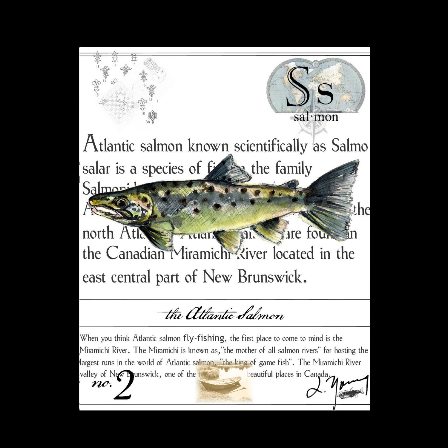 Canada New  Brunswick Atlantic Salmon on Canvas - 8x10