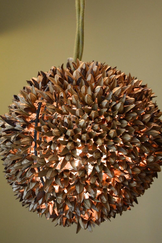 Cedrela Globe by Danielle Quigley