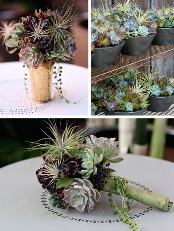 Beautiful Heart Shape Succulent Wreath Or Centerpiece, February Delivery, Great Valentines Day Gift
