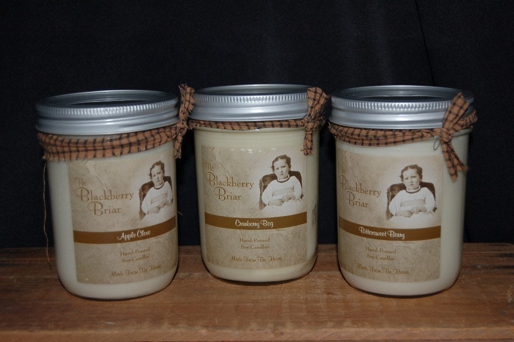 16oz Blackberry Briar HandPoured Soy Candle Choose your Scent