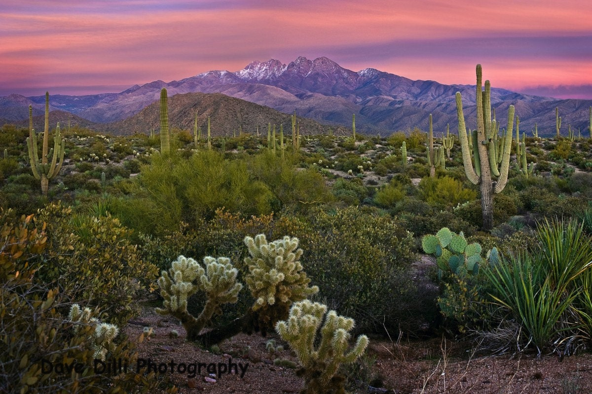 7 x 10 Photograph - Arizona Four Peaks Pink Sunset Fine Art
