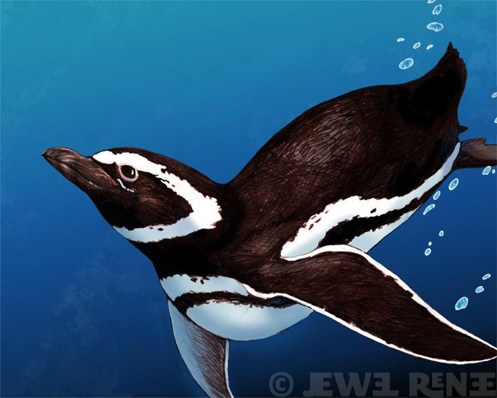 "Penguin Art 4x6"" Print - Teal black White Aquatic Art - Watercolor Inspired"