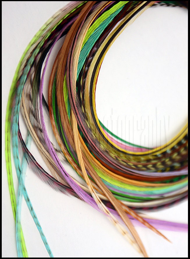 Wholesale Hair Feathers 64