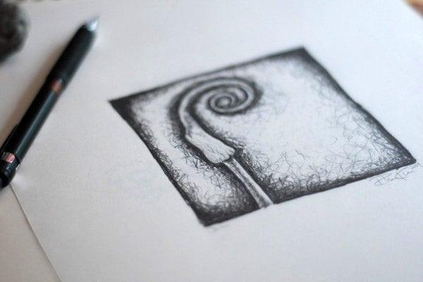 Onion - Graphite on paper
