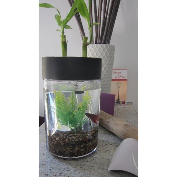 Unavailable listing on etsy for Aquaponics fish tank kit