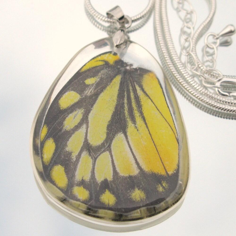 Реальная подвеска крыла бабочки на серебро покрытием Змея сеть Желтый Черный Prioneris Philonome Pulelehua