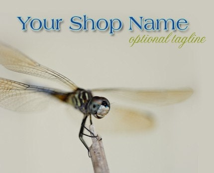 Free Clip Art Dragonfly. clipart image Page dragon