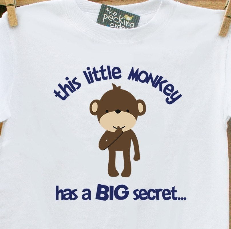 NEW MONKEY SECRET big brother to be - pregnancy announcement