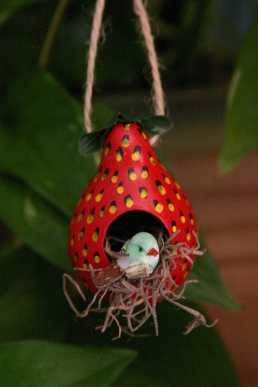 Ornamental Gourd Birdhouse - Strawberry Delight (1b)