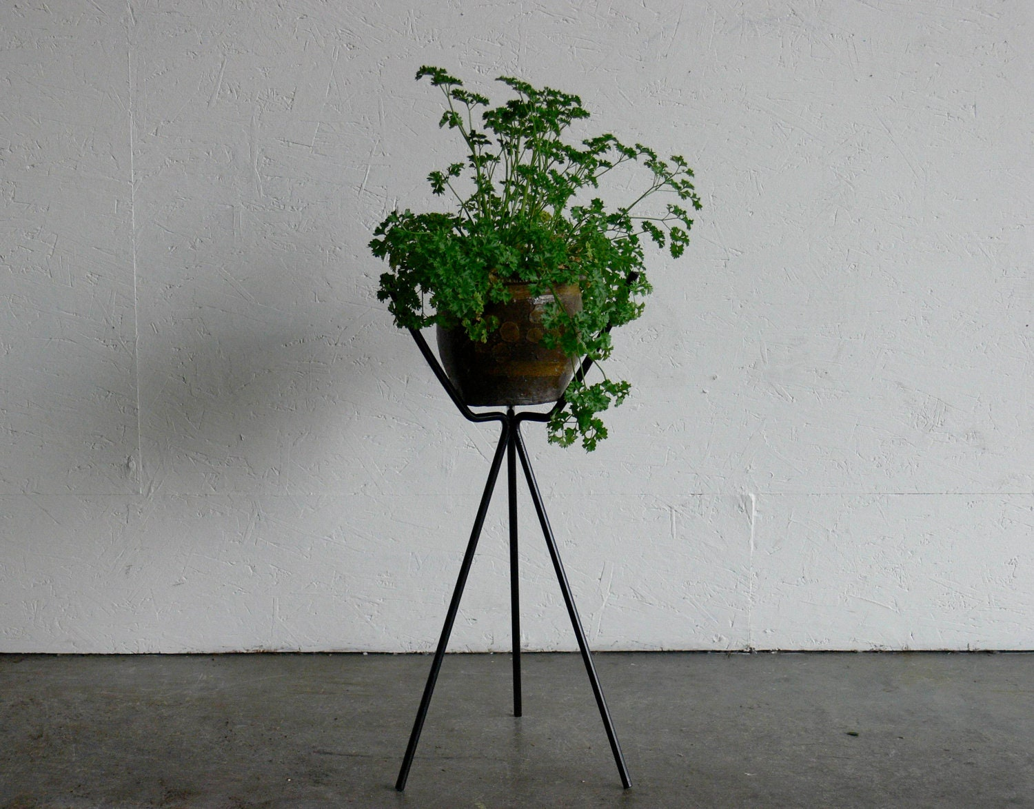 Vintage Mid Century Modern Wire Plant Stand by CoMod on Etsy