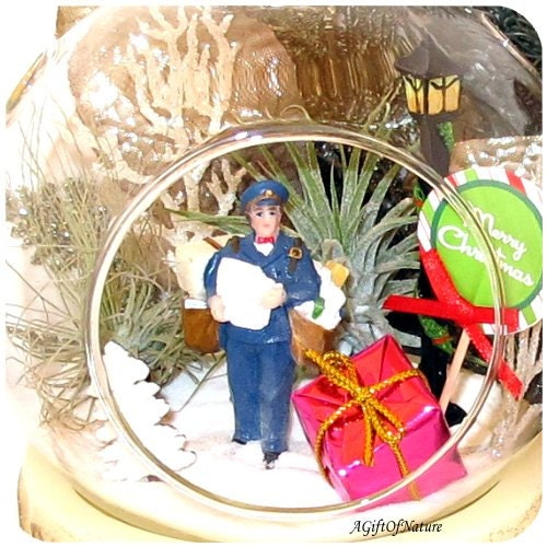 You've Got Christmas Mail Letter From Santa Terrarium - Glass Round Globe, Tillandsia Air Plants ~ Holiday Decor ~ Home Decor ~ Gift Idea - AGiftofNature