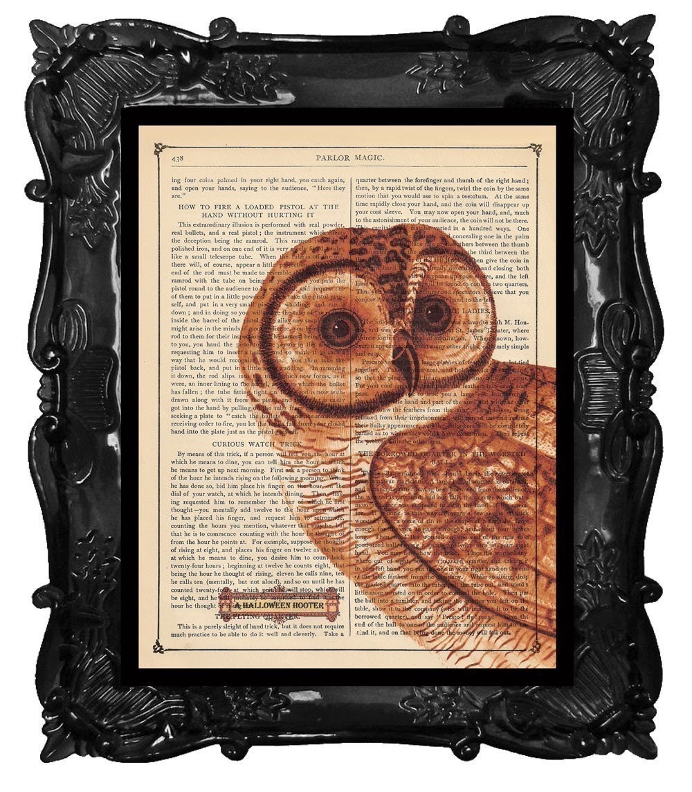OUR ORIGINAL DESIGN AND CONCEPT FREE SHIPPING WORLDWIDE MOD ORANGE OWL PRINT WHOOOS THERE on an Antique 1883 Book Page
