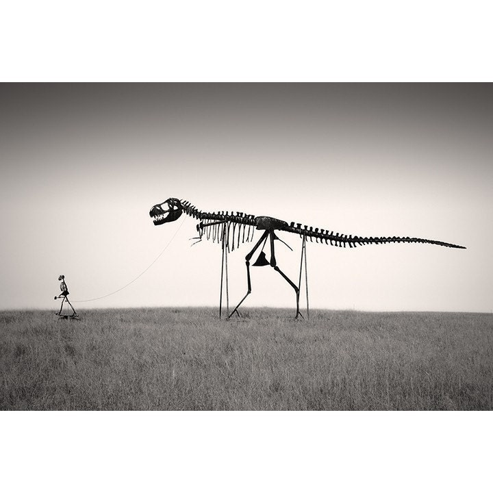 Man's Best Friend - Dinosaur Skeleton Photo - 12 x 18 Fine Art Archival Photograph