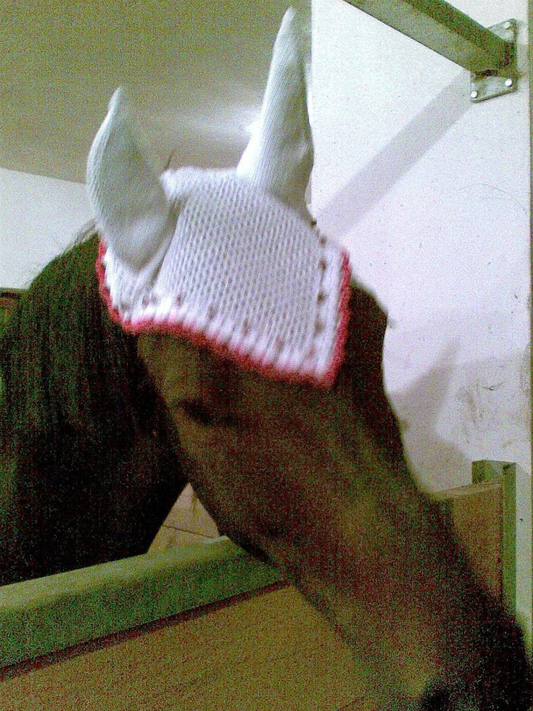 Free Crochet Horse Fly Mask Pattern : Horse fly bonnet PATTERN.PDF/ Horse hat / horse by popelkaLida