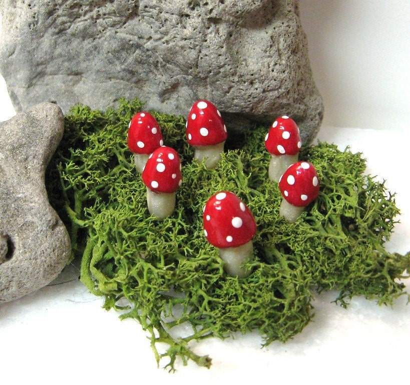Fairy Ring,  6 Little Mushrooms, Toadstools for Your Planters or Terrariums