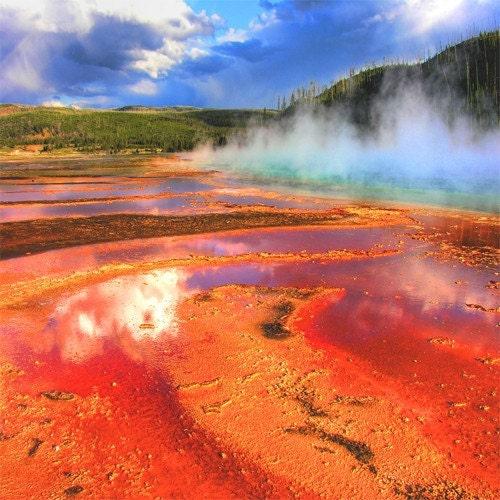Yellowstone - LMP